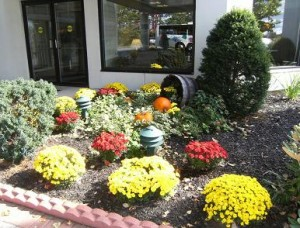 Entrance with Fall flower bed 1